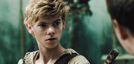 I got: Newt! Which Maze Runner Character is your Soul mate?