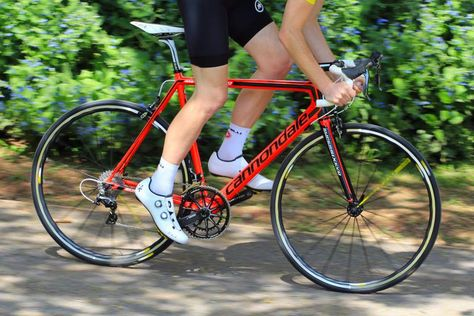 Looking For A Cheap Road Bike Here S Your Complete Guide To The