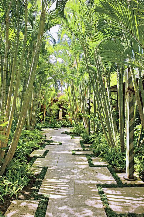 Wonderful Tropical Garden Pathway Landscape - Looking for a Various Garden Pathway Landscape Tropical Landscaping, Modern Landscaping, Landscaping Ideas, Tropical Gardens, Landscaping Software, Garden Landscaping, Terraced Backyard, Hawaiian Gardens, Landscaping Contractors