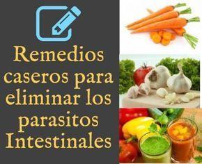 plantas medicinales para combatir los parasitos