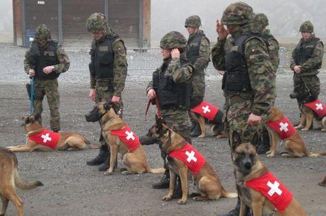 10 besten Army Bilder auf Pinterest