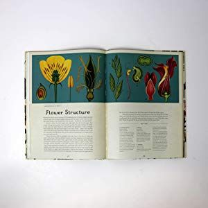 Botanicum Poster Book Welcome To The Museum Amazon Co Uk