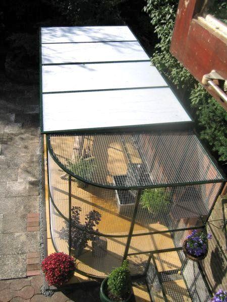 Pantip Com J7550664 ไอเด ย ร ว สำหร บ ก นแมวออกนอกบ าน และกรงแมวในสวน เอามาฝากค ะ ในป 2021 แมว แมวน อย ร ว