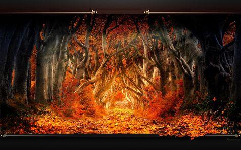 foto de Paysage Fonds d'écran - Image arrière-plan - Wallpaper Favorisxp ...