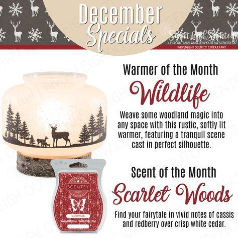 scentsy Scentsy December 2017 Warmer...