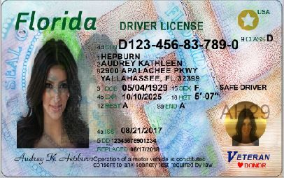 Template Florida Drivers License V2 Drivers License Financial Apps Id Card Template