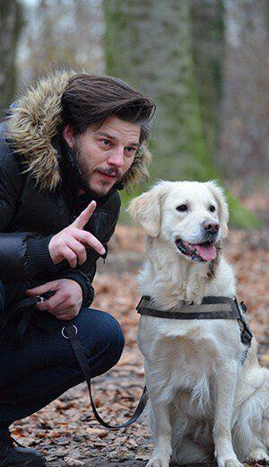 Man Training Dog Dog Training Training Your Dog