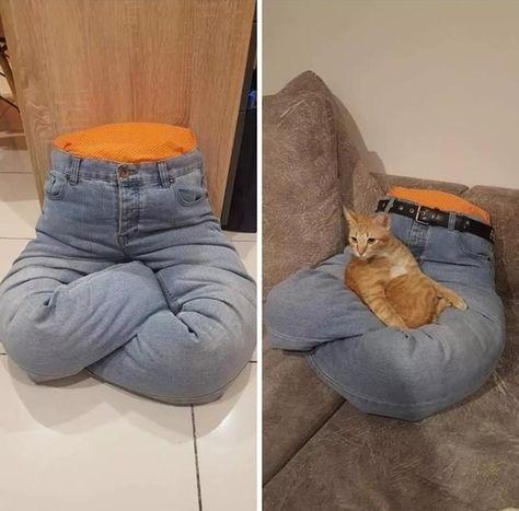 Brilliant Pet Bed DIY Ideas with Tutorials Animals And Pets, Funny Animals, Diy Cat Toys, Homemade Cat Toys, Cat Playground, Cat Enclosure, Cat Room, Pet Furniture, Cat Accessories