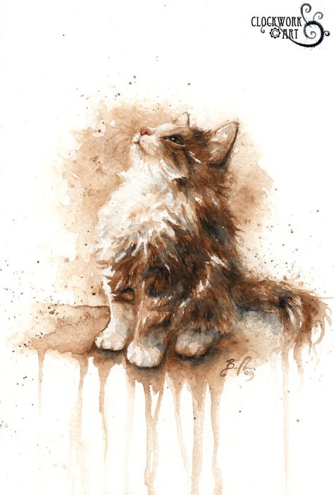 Another of Braden Duncan's utterly beautiful and adorable pet portraits - sweet kitten!