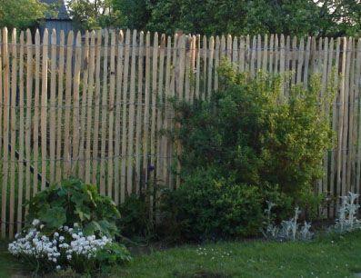 Staketenzaun Sichtschutz Hohe 1 75m Lattenabstand 2 3cm Rolle 5m Sichtschutzzaun Garten Garten Zaun Ideen Traumgarten
