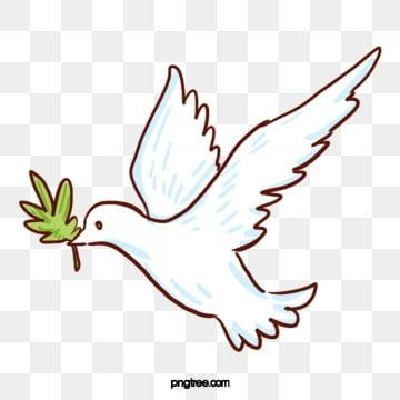 White Animal Pigeon Flying White Animal Dove Png Transparent Clipart Image And Psd File For Free Download Dove Pictures Dove Images Bird Outline