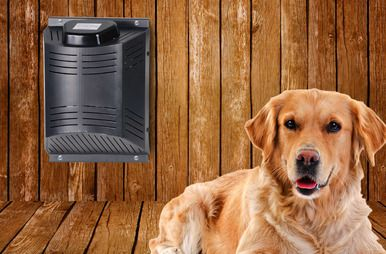Climate Right Dog Kennel Heater With Fan Dog House Heater