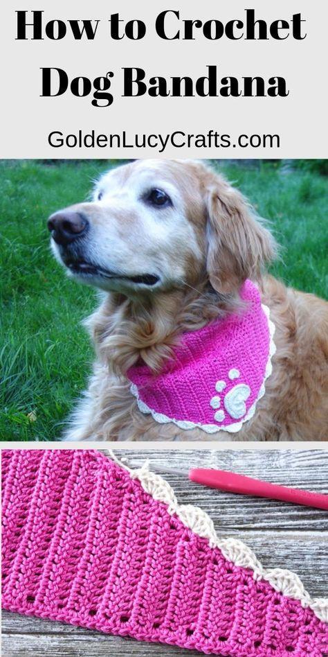 How to Crochet Dog Bandana