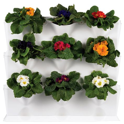 Mini Vertical Garden--for Indoors or Out!
