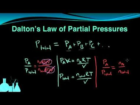 28 Gas Laws Ideas Chemistry Physical Science Science Chemistry