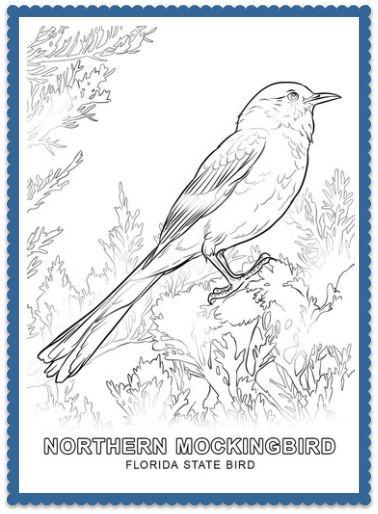 florida state bird bird