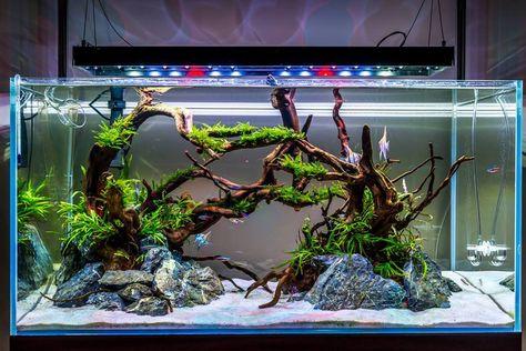 61 * 30cm Fondo de estilo de hierba de agua Papel de decoraci/ón autoadhesivo para acuario de pecera Cartel de decoraci/ón de pecera