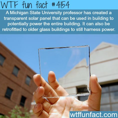 Transparent Solar Panel Made By Michigan State Fun Facts Wtf Fun Facts Weird Facts