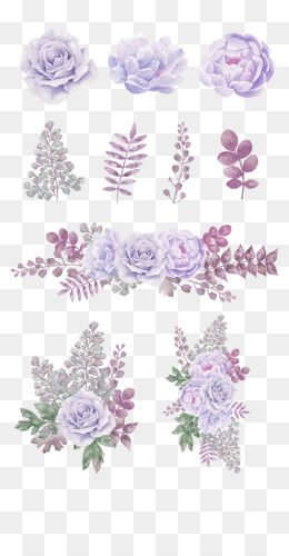 Flowers Png Flowers Transparent Clipart Free Download Lavender