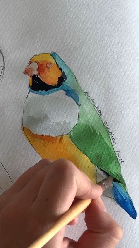 Bunter Vogel in Aquarell