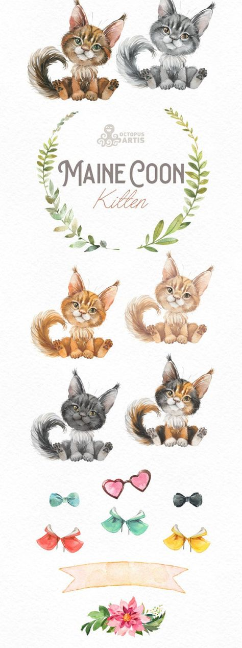Maine Coon Kitten. Watercolor little cat clipart portrait | Etsy