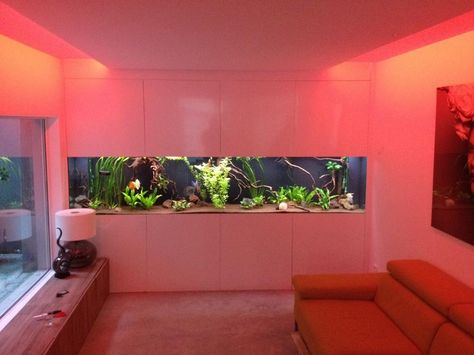 Magnificent Living Room Aquarium Mold - Living Room Designs ...