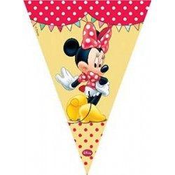 33 fantastiche immagini su Party Minnie - Festa e ...