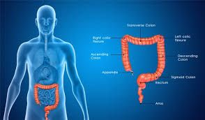 Colorectal Surgery Colon Cancer Ulcerative Colitis Dr Lemus Rangel Colon Cleanse Colorectal Herbal Colon Cleanse