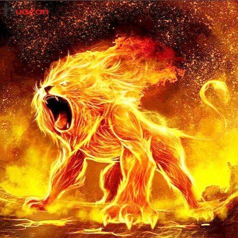 Lion Fire, 50x50cm