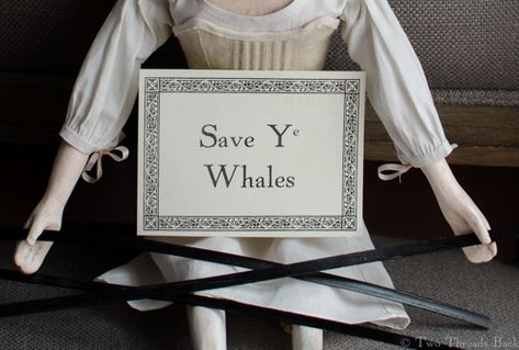 Pharaby protests whaling.