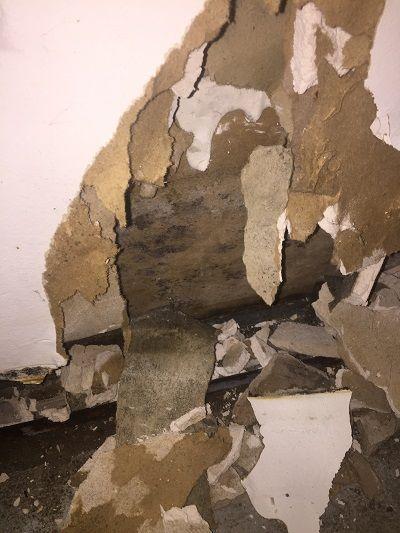 Damaged Wall Water Damage Flooded Basement Water Damage Wood