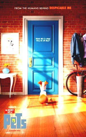 Ansehen Filmes Via Netflix Watch The Secret Life Of Pets Ultrahd 4k Movie The Secret Life Of Pets Subtitle Complete Moviez Film Animasi Film Anak Ellie Kemper