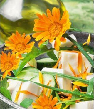 Kwiaty Jadalne Nagietek Lekarski Pomaranczowy W Sklep Nasiona Sprawdz Darmowa Wysylke Plants Herbs