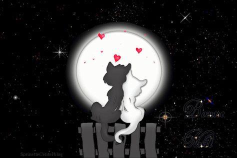 Bonne Nuit - Chats - Couple - Lune - Etoiles - Amour - Gif scintillant - Gratuit