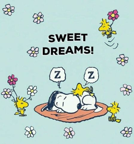 Discover & share this Gif Snoopy Woodstock Friends Sweet Dreams Sleep GIF with everyone you know. GIPHY is how you search, share, discover, and create GIFs. Cute Good Night Quotes, Good Night Gif, Good Night Messages, Good Night Image, Cute Quotes, Good Night Greetings, Good Night Wishes, Good Night Sweet Dreams, Goodnight And Sweet Dreams
