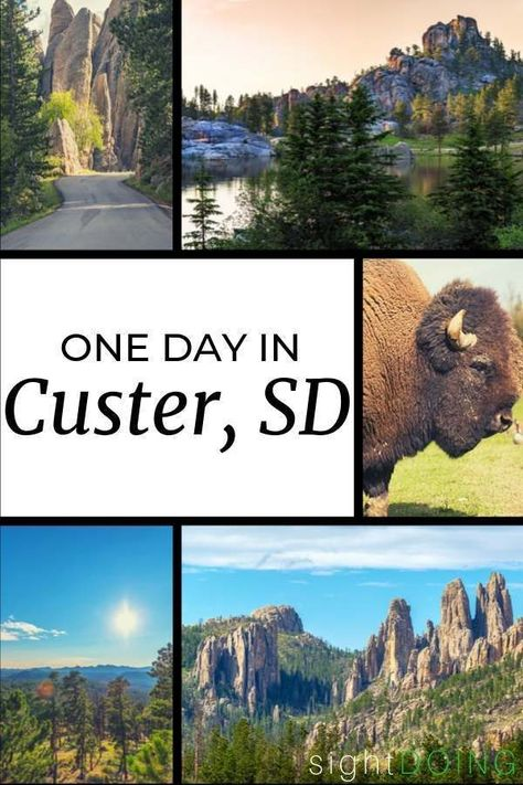 Can you see all of South Dakota's Custer State Park in one day? Here's how to visit with the wildlife loop, hiking, Sylvan Lake, and more with an easy schedule. South Dakota Vacation, South Dakota Travel, Places To Travel, Places To Go, Badlands National Park, National Parks, Sylvan Lake, Custer State Park, Summer Travel