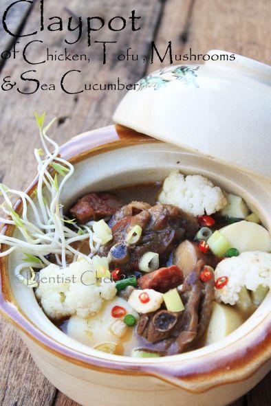 Claypot Of Chicken Tofu Sea Cucumber And Mushrooms Recipe Resep Jamur Resep Makanan Makanan