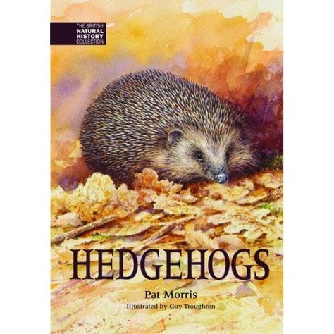 Hedgehogs by Pat Morris. Entirely new edition by Dr Pat Morris (200 page hardback). Down-to-earth scientific information and illustrated throughout by Guy Troughton. Hedgehog Awareness Week #HedgehogWeek