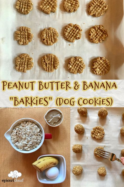 Homemade Dog Cookies with peanut butter and banana! You can bake these to whatever size or texture your dog prefers: chewy or crunchy! Dog Cookie Recipes, Easy Dog Treat Recipes, Homemade Dog Cookies, Dog Biscuit Recipes, Homemade Dog Food, Dog Food Recipes, Dog Cookies Recipe Peanut Butter, Cookies For Dogs, Homemade Dog Biscuits