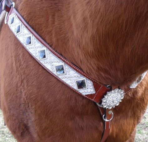 Silver Royal Ladies//Youth Size Black Widow Collection Spur Straps 78-7913