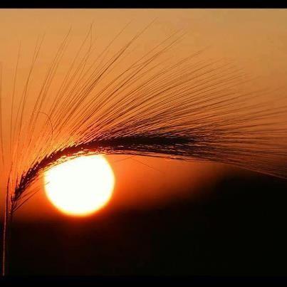Eye in the sky - Imgur