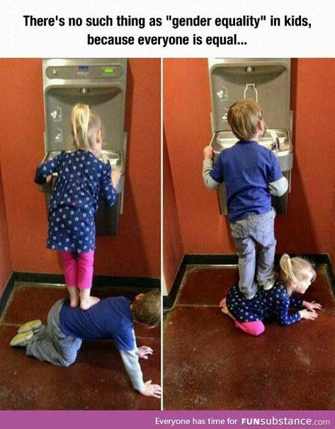 "There's no such things as""gender equality""in kids,because everyone is equal#OMG #WTF #Humor #Gags #Epic #Lol #Memes #Weird #Hot #Bikni #Fails #Fun #Funny #Facts #Hot Girls #Entertainment #Trending #Interesting"