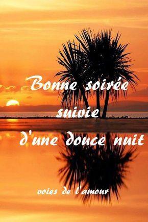 Bonne Nuit Coucher De Soleil : bonne, coucher, soleil, Bonne, Soirée, Image, Nuit,, Romantique,, Citation