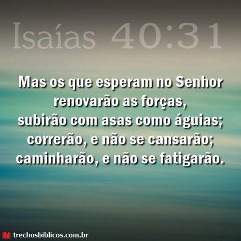 Isaias 40 31 Em 2020 Proverbios Biblicos Mensagem Biblica De Fe