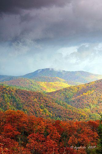 Autumns Quilt Work | I shot this near Hazel Mountain look ou… | Flickr