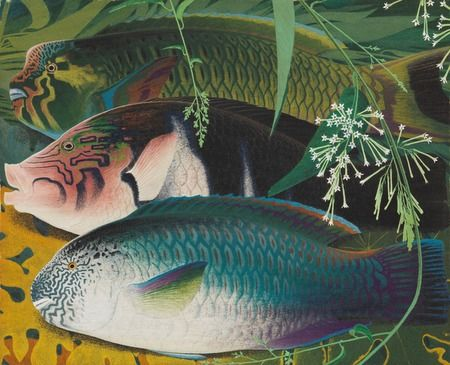 亜熱帯の生き物たちを描いた孤高の画家・田中一村の作品を初公開!|ニュース|映画情報のぴあ映画生活(1ページ)