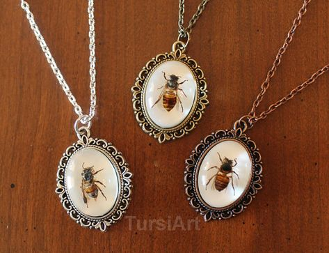 REAL Honey Bee set in resin pendant thin chain necklace choice of brass silver copper & clasp Taxidermy garden Insect be mine valentine gift