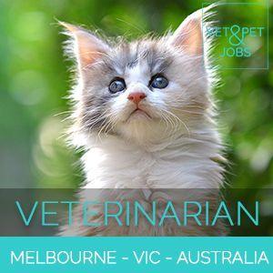 Veterinarian Small Animal Greater Melbourne Victoria