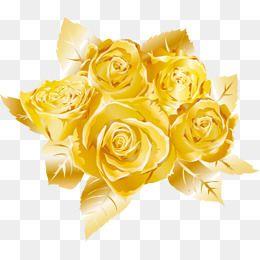 Buque De Rosas Cor De Rosa Pintadas A Mao Pintados A Mao Aquarela Material De Desenho Imagem Png E Vetor Para Download Gratuito Rose Clipart Golden Rose Rose