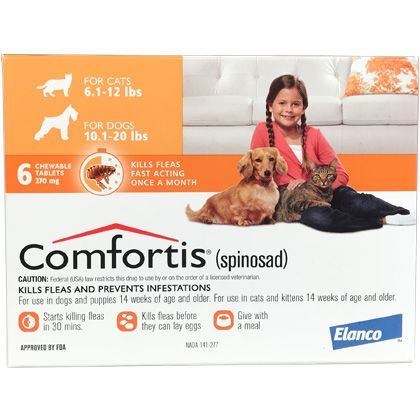 Comfortis Fleas Flea Treatment Dogs